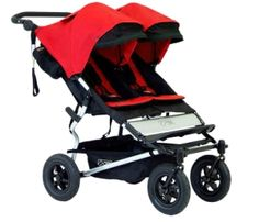 Young #twins, new #Twin umbrella stroller http://www.williammurchison.com