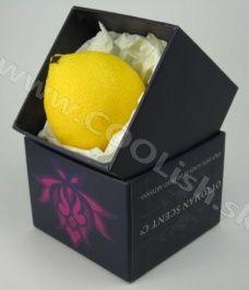 Mydlo v tvare ovocia - darček pre ženy Fresh soap Lemon, Container, Shapes, Fresh, Food, Essen, Meals, Yemek, Eten
