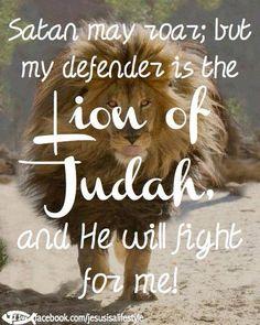 The Lion of Judah!