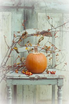 groß Bittersweet and pumpkin - Dekoration Site / 2019 Thanksgiving Decorations, Holiday Decor, Fall Decorations, Vibeke Design, Primitive Fall, Autumn Decorating, Happy Fall Y'all, Autumn Day, Autumn Leaves
