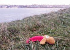 Gamberro contempla la ciduad de Santander desde la bahía http://blog.fluff.es/2013/11/munecos-viajeros-santander.html