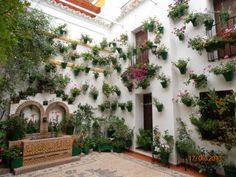 Beautiful Cordoba, Andalusia, Spain  Typical Patio Festival