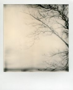 Impossible Film Project (new-generation Polaroid)
