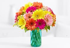Colorful Birthday Daisies