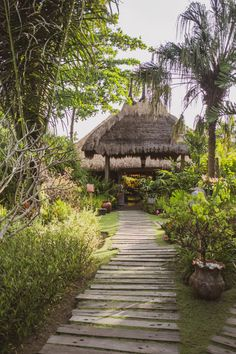 Eco Hotel Review: Desa Seni A Village Resort, Bali Hotels In Bali, Bamboo Village, Jungle Resort, Village Hotel, Bamboo Architecture, Natural Structures, Forest Path, Tropical Houses, Hotel Reviews