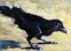 Crafty looking crow by                                                                                                                                                                                                                                                                                                                                                by Rick Nilson