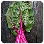 Organic Pink Passion Chard.