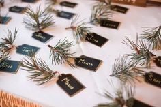 Evergreen Escort Cards For Winter Wedding
