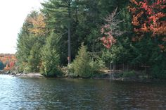 Kawartha Highlands Provincial Park Ontario Parks, Highlands, Toronto, Places To Visit, Canada, Camping, River, Nature, Outdoor