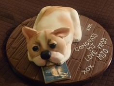 CD release cake for Michael Johns from American Idol Season 7. His dog Puddy and an edible image of his CD :)