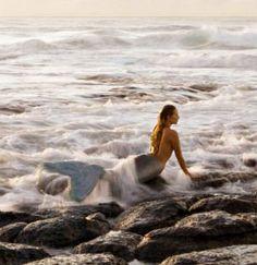 Glamour Mermaids / karen cox. tide pool...
