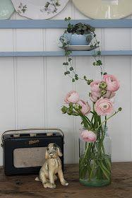 E g elsker blomster.   Mest av alt ranunkler. Og når dei er rosa  i tillegg,   er dei fantastiske! Berre så synd dei varer så kort. Dei k...