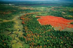 50 natural destinations which should always be fall - Forests of Maine (USA): Festival of Colors