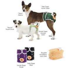 Washable Diapers - big solution for incontinence.  I might buy one for my senior baby girl <3