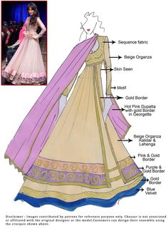 DIY Chitrangada Singh Long Choli Lehenga