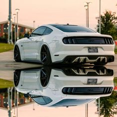 Bad-ass Ford Mustang - Best Picture For Classic Cars ferrari For Your Taste You are looking for something, and it is going to tell you exactly what you are looking for, and you S550 Mustang, Ford Mustang Shelby, Shelby Gt500, Mustang Cars, Bentley Auto, Carros Audi, Bmw Autos, Ford Classic Cars, Bmw Classic