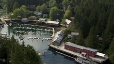 Gordie Graham reflects on what brought him to Telegraph Cove Alaska Highway, Vancouver Island, Vacation Trips, British Columbia, Coast, Journey, Explore, Graham, Nature
