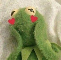 ideas for memes de amor muppets Meme Faces, Funny Faces, Sapo Kermit, Kermit The Frog Meme, Sapo Meme, Heart Meme, Cute Love Memes, Mood Pics, Cartoon Memes