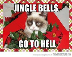 15 Christmas Song Memes To Make Your Holidays Extra Fun | SayingImages.com Angry Cat Memes, Grumpy Cat Meme, Grumpy Cat Quotes, Grumpy Kitty, Cat Jokes, Kitty Cats, Grumpy Cat Christmas, Merry Christmas, Christmas Humor