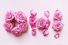 Photograph Oh Pink Roses by itsaflowerthing on Etsy