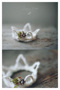 How cute is this little crown photo prop? Christmas princess crown / Andrea Zoll design