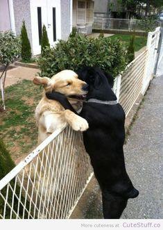 Hugs....love is love :)
