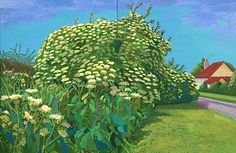 David Hockney -Elderflower Blossom, Kilham, 2006