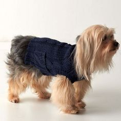 Cableknit Dog Sweater