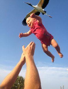 赤ちゃんと鳥