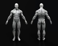Anatomy Figure, Marc Brunet on ArtStation at https://www.artstation.com/artwork/g23OE