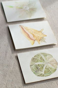I could frame these Hand Painted Note Cards by India Hicks and line them up on a wall, couldn't I?