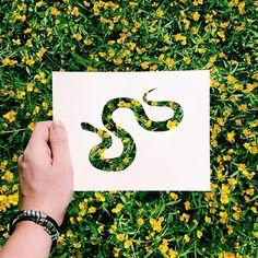 Os criativos recortes de papel de Nikolai Tolstyh - Nikolai Tolstyh cria belas silhuetas de animais com recortes de papel, e deixa que a própria natureza preencha o desenho. Confira sua bela arte!