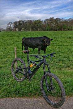 6ef086965960f2 Die 24 besten Bilder von E-Bikes zum Ausprobieren
