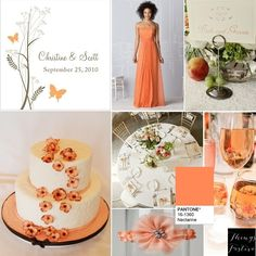 Pantone's Color of the Day: Nectarine.  Perfect for a spring or summer wedding. http://blog.thingsfestive.com/2015/07/pantones-color-of-day-nectarine.html #weddingcolorpalette #weddingcolors