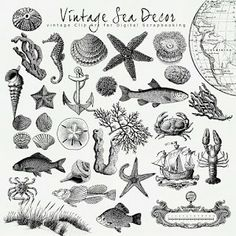 New Freebies Vintage Kit:Far Far Hill - Free database of digital illustrations and papers Images Vintage, Vintage Maps, Vintage Prints, Nautique Vintage, Printable Art, Free Printables, Printable Vintage, Far Hills, Nautical Theme