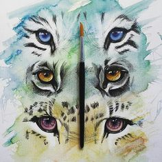 Repost from @lcross.art  'Watchful Predators' 34cm x 48xm (Mixed Media)  _ Which is your favourite? 1 2 or 3?  _ FOR SALE - please contact me if interested  _ #art #drawing #pen #Watercolour #colour #animal #tiger #tigers #animalart #lion #panther #eyes #artist #fabercastell #dreams #dreaming #work #animalkingdom #arts_help #blvart #artcollective #illustratenow #arts_mag #artistsuniversity #arts_gallery #arts_secrets #blvart via http://instagram.com/zbynekkysela