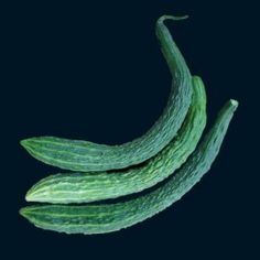 """Suyo Burpless, Long Cucumber  Sweet and crunchy & great for warm weather climates. Planting: Set seeds 1/2 """" deep in fertilized formed hills setting 4' to 5' apart. Use 4-6 seeds per hill. Tamp lightly and keep moist (without over watering) If using trellis: set rows 4' apart with 4"""" between seeds. Thin to 8"""" spacing for rows or 2 seedlings per hill once 6"""" high. Needs reg. water and feed every few wks. Ready for gentle picking in 60 days. Pick often to stimulate growth."""