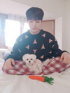 Seventeen Hoshi with doggo Bookeu Woozi, Jeonghan, Hoshi Seventeen, Seventeen Debut, Seventeen Minghao, Carat Seventeen, Seventeen Memes, K Pop, Star In Japanese