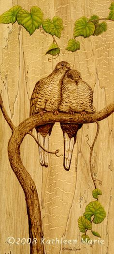 Inca doves burned on spalted maple...like the use of color here!