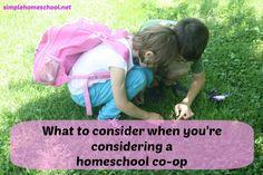 What to consider when you're considering a homeschool co-op - http://simplehomeschool.net/homeschool-co-op/
