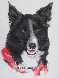 Weer een hondenportret opgehaald.