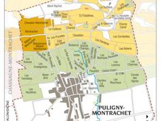A good look at the Grand and Premier cru vineyards where Chardonnay reigns supreme in Cotes de Beaune