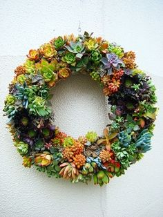 クリスマスリースのように輪っか状に寄植えするタイプです。玄関の扉に飾ってもいいですね。