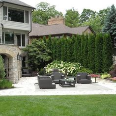 64 Ideas Backyard Privacy Landscaping Hedges Evergreen For 2019 Arborvitae Landscaping, Privacy Landscaping, Outdoor Privacy, Outdoor Landscaping, Backyard Patio, Landscaping Ideas, Backyard Privacy Trees, Back Yard Privacy Ideas, Backyard Ideas
