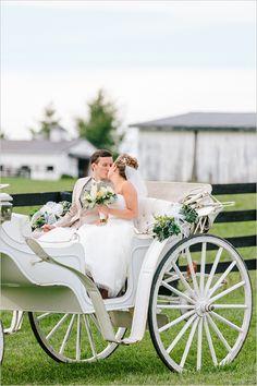 horse drawn carriage at wedding