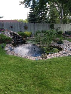 front yard landscaping ideas with rocks 2081405727 Outdoor Ponds, Ponds Backyard, Outdoor Gardens, Garden Pond Design, Landscape Design, Small Yard Landscaping, Landscaping Ideas, Fish Pond Gardens, Diy Garden Fountains