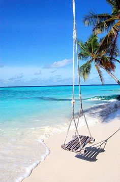 White sand beaches, clear blue waters, and a super awesime tree swing that swings out over the ocean waves . Beautiful Tropical Paradise pictures ocean Home Dream Vacations, Vacation Spots, Beach Vacations, Places To Travel, Places To Go, Travel Destinations, I Love The Beach, Tropical Paradise, Summer Paradise