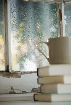 Livros chuva campo café