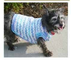 Free crochet doggie sweater pattern that is just the cutest. A perfect addition to any doggie wardrobe.