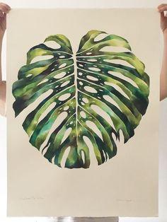 Monstera Leaf. Watercolour. Jasmin Dwyer
